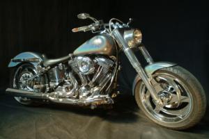 Harley polychrome